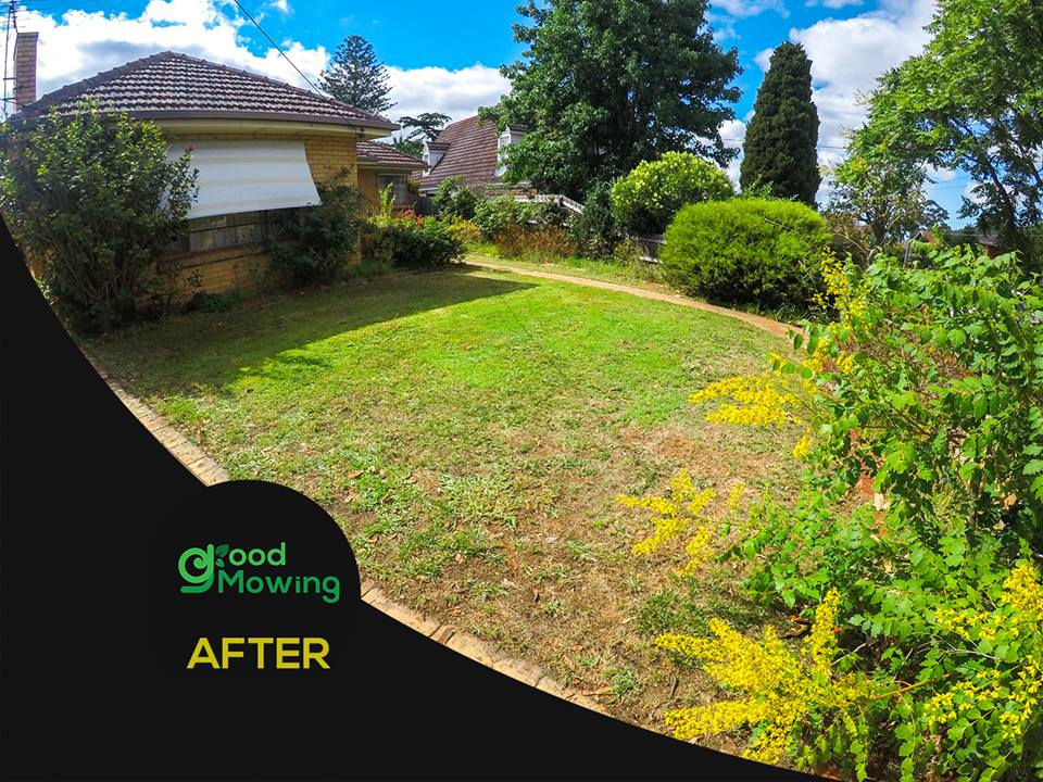 Lawn care franchise for sale