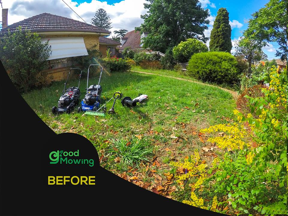 Mowing franchise for sale