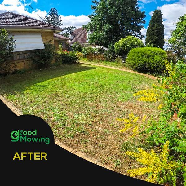 Mowing Lawn Urgency