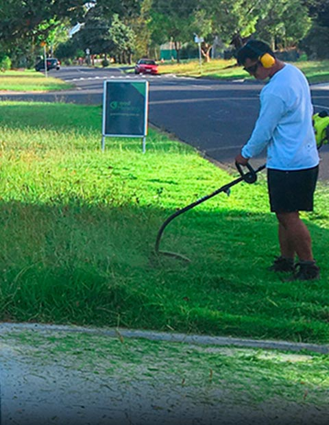 Grass Cutting Service Springvale