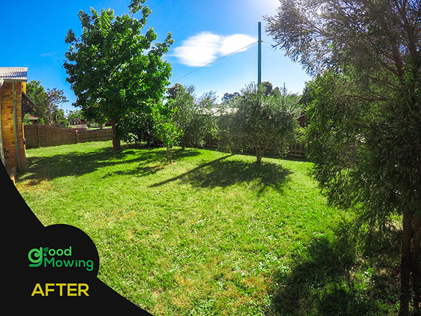 Lawn Mowing Near Me Bundoora