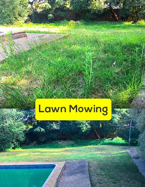 Lawn Mowing Service South Morang Affordable Grass