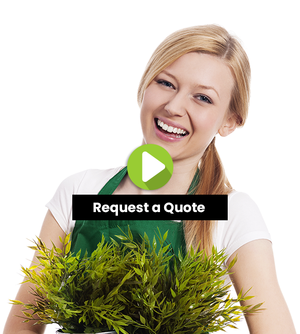 Bundoora-Lawn-Mowing-and-Grass-Cutting-Services